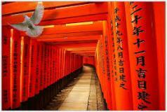 Hội chợ Tokyo International Gift Show 2014