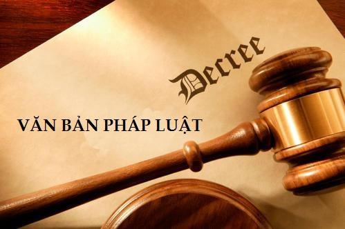 TT 11/2010/TT-BNV quy định chi tiết thi hành Nghị định số 45/2010/NĐ-CP của Chính phủ về tổ chức, hoạt động và quản lý hội